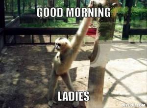 good morning, ladies