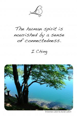 Zen Quotes Philosophy Pictures