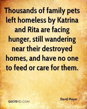 Thousands of family pets left homeless by katrina and rita are facing