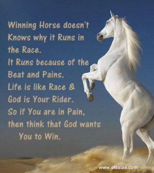Nice life and motivational quotes-thoughts-pain-rider-race-win