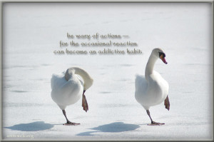Be wary of actions – habit quotes