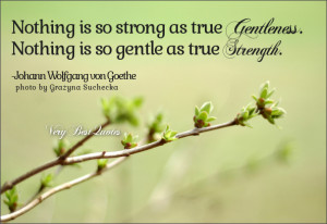 Strength quotes, gentleness quotes, Nothing is so strong as true ...