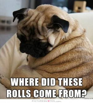 Where did these rolls come from? Picture Quote #1