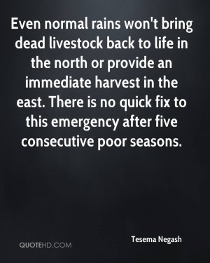 Even normal rains won't bring dead livestock back to life in the north ...