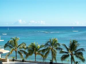 Owners Ocean View Image