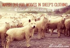 Watch out for Wolves in Sheep's Clothing and Other #InternetDating ...