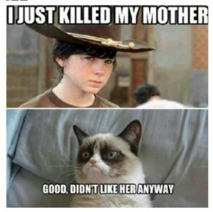 Here is Part 2 of our Funny Walking Dead Memes list. Hope it was worth ...