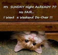 Weekend Is Over Quotes Do you want a #weekend do-over