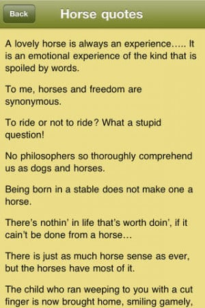 Horse Quotes - Horsemanship Sayings for Equestrians