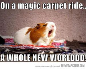 Cute Hamster Quotes. QuotesGram