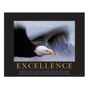 Excellence Eagle Motivational Poster (732339)
