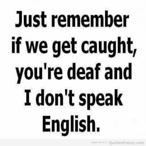 Pictures, Funny Jokes, Funny Quotes, Funny Amazing Pictures,Crazy ...