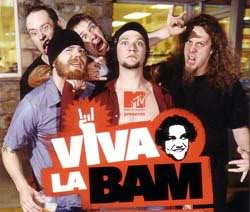 secert life american teenagermake break 10 hate viva la bam