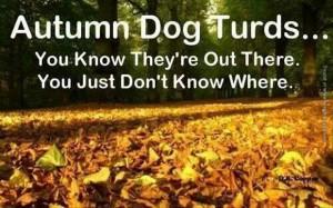 funny pics autumn dog turds