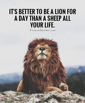 Animal Quotes Lion Quotes Better Quotes Sheep Quotes Elizabeth Kenny ...