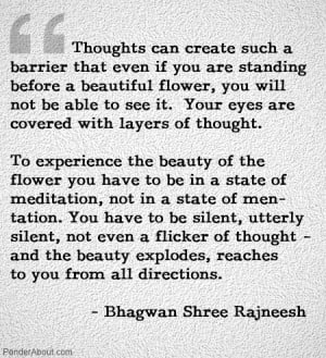 Life as moving meditation... BEing through observation, dynamic ...