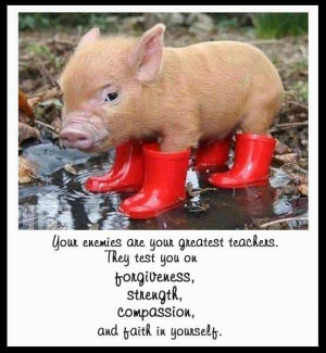 saying, cute, pig, forgive, strength, compassion, faith,red, boots,