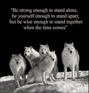 Wolf values picture quotes image sayings