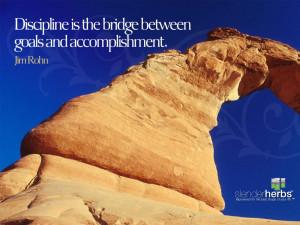 Discipline is the bridge between goals and accomplishment. Jim Rohn