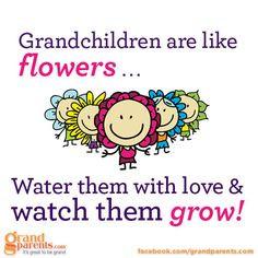 grandma #grandpa #grandkids #grandparents #quotes More