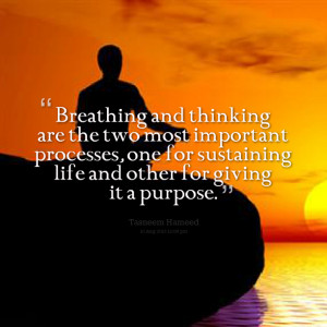 Quotes Picture: breathing and thinking are the two most important ...