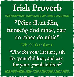 Irish Proverbs About Love Irish proverbs and sayings