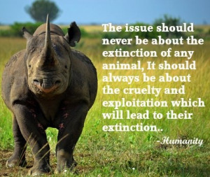 endangered animals!Rhino Art, Endangered Species, Saving Endangered ...