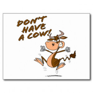dont have a cow humorous cow cartoon postcards