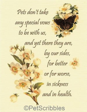 Sympathy Quotes And Poems Pictures