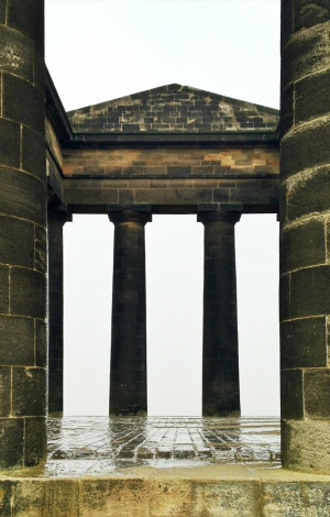 Photo-a-day 42: The Penshaw Monument (and a cow)