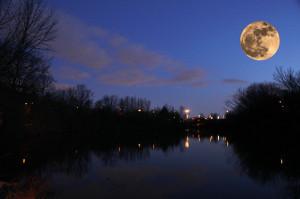 Beautiful Full Moon Quotes