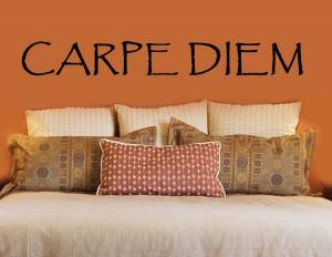 Carpe Diem - Seize The Day   Inspirational Wall Quotes   Carpe Diem ...