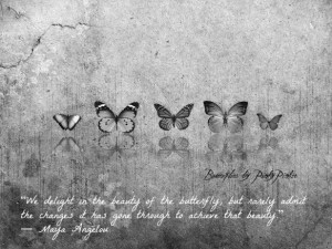 Butterflies Quote Maya Angelou - metaphor about change