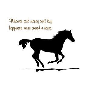 Equine-nomics (Parte 1) For All You Crazy Horse People Or The Normal ...