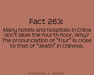 ... .pics22.com/many-hotels-and-hospitals-fact-quote/][img] [/img][/url