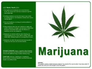 Marijuana Funny Quotes Doblelolcom Picture
