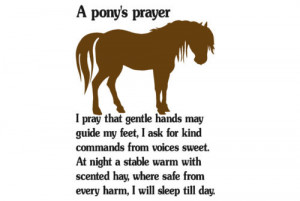 Horse decal-Pony sticker-Horse quote wall decor-28 X 40 inch Pony ...