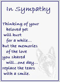 ... Of Your Beloved Pet Will Hurt For A While… – Pet Sympathy Cards