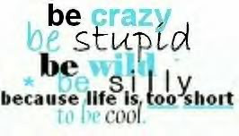 quote crazy stupid wild silly Image