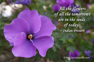 sayings about flowers