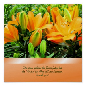 Lovely Lilies Poster with Bible Verse