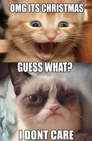 Funny-Cats-Top-49-Most-Funniest-Grumpy-Cat-Quotes-24.png