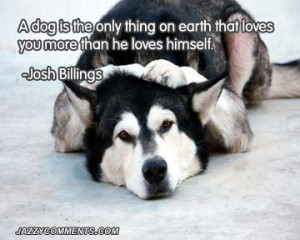 ... dog quotes you have ever heard funny dog quotes fun dog quotes when a