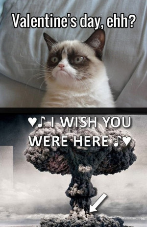 Grumpy Cat and blast