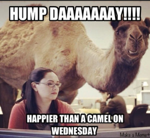 Guess what day it is? » Hump day