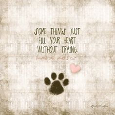 dog quotes that will make you love your dog more more cute dogs quotes ...