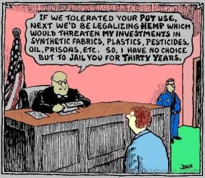 cannabis #what is marijuana #marijuana #weed #cannabis #funny weed ...