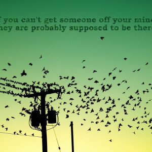 Free Bird Quotes