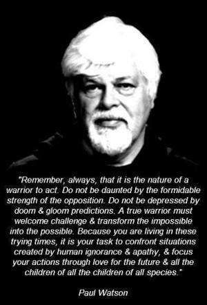 Paul Watson Quote