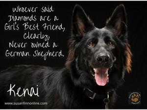Kenai had a litter of 6 German Shepherd puppies on 2/15/15. Contact me ...
